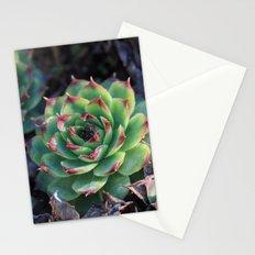 Sempervivum Succulents Stationery Cards