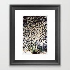 cactus... Framed Art Print