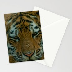 Baby Tiger  Stationery Cards