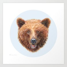 Brown Bear portrait Art Print