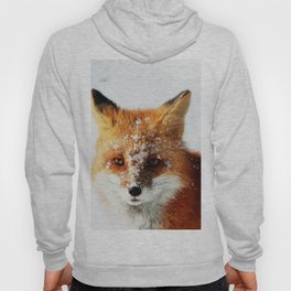 Snowy Faced Fox Hoody