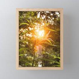 Let the light shine through Framed Mini Art Print