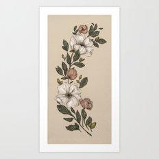 Floral Laurel Art Print