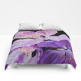 Radiance Comforters