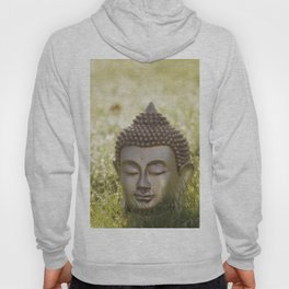 Buddha in the bright lights of morning dew Hoody
