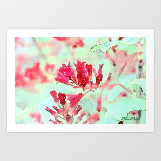 summer pink flowers. botanical art.  floral photo art. Art Print