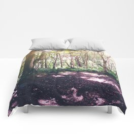 Forest Glare Comforters