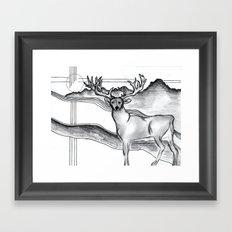 Blue Ridge Deer Framed Art Print