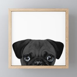 Black Pug, Original painting by miart Framed Mini Art Print