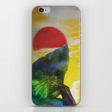 tcs6rec16 iPhone & iPod Skin