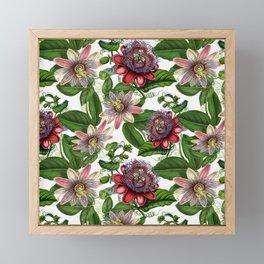 Vintage & Shabby Chic- Retro Passiflora Pattern Framed Mini Art Print