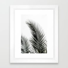 Palm Leaves Framed Art Print