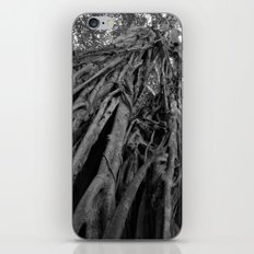 Raíces iPhone & iPod Skin