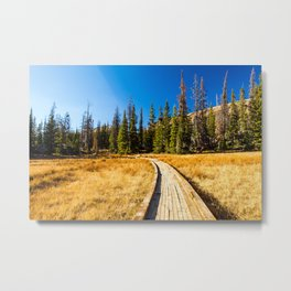 Wooden hiking trail in the forest Metal Print