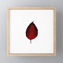Fire leaf Framed Mini Art Print