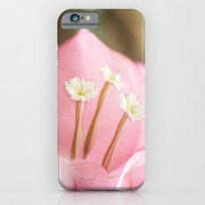 Taking the Stage iPhone 6s Slim Case