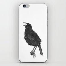 Tordo - Blackbird iPhone & iPod Skin