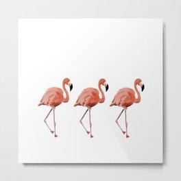 A Flamboyance of Flamingoes - Flamenco - 57 Montgomery Ave Metal Print