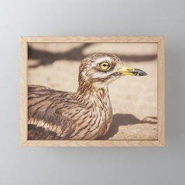 Freaky Eye Framed Mini Art Print