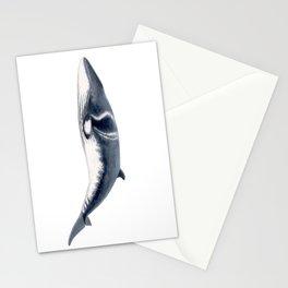 Baby Minke whale Stationery Cards