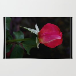 double delight rose bud  Rug