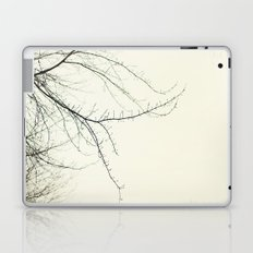 Isles Laptop & iPad Skin