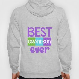 Family Tree Kinship Ancestry Household Love Bloodline Ancestors Best Grandson Ever Gift Hoody