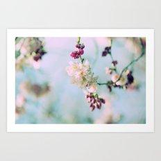 Cherry Blossoms pink Pastels Art Print