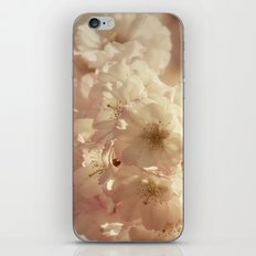 Sprung iPhone & iPod Skin
