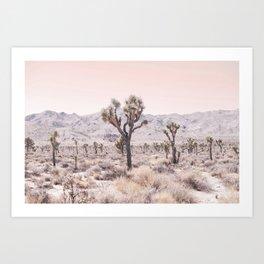 Joshua Tree Kunstdrucke