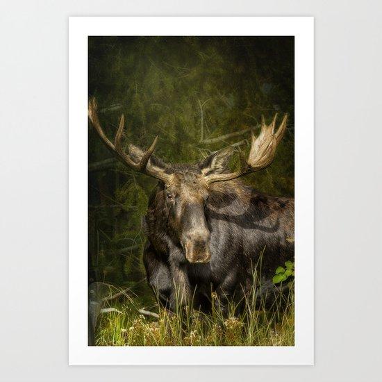 The Bull Moose Art Print