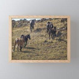 Garcia Herding His Band Framed Mini Art Print