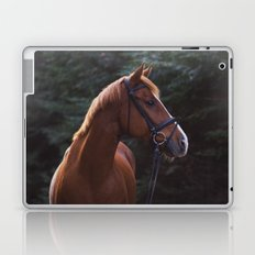 henry.  Laptop & iPad Skin