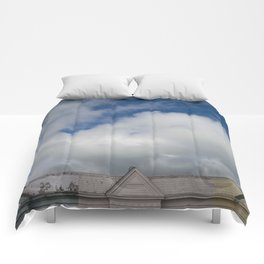 Painted Ladies Comforters