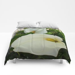 Overhead View Of Two Calla Lilies In A Garden Comforters