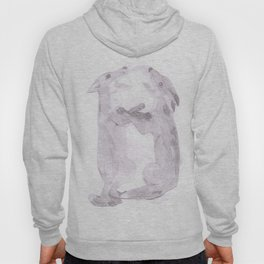 fighting foxes Hoody
