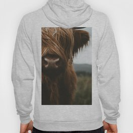 Scottish Highland Cattle Hoody