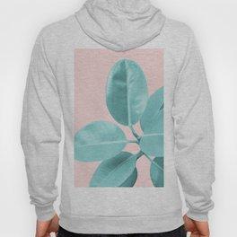 Ficus Elastica Pastel Blush Glam #1 #tropical #foliage #decor #art #society6 Hoody
