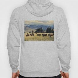 National Parks Bison Herd Hoody