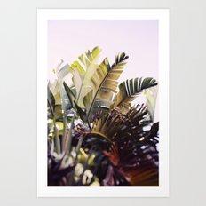Paradise #1 Art Print