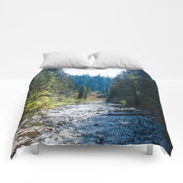 Fall Trees Photography Print Comforters