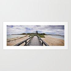 Penquin Island Boardwalk Art Print