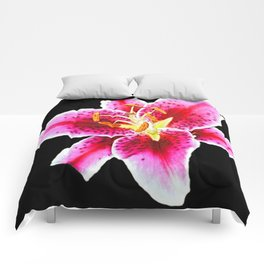 FUCHSIA PINK ASIATIC LILY FLOWER BLACK Comforters