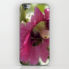Buzzing here and there iPhone & iPod Skin