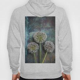 Three Allium Flowers Hoody