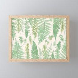 Ferns Framed Mini Art Print