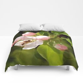 Apple Blossom and Bee Comforters
