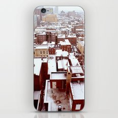 Juniper and Locust East View iPhone & iPod Skin