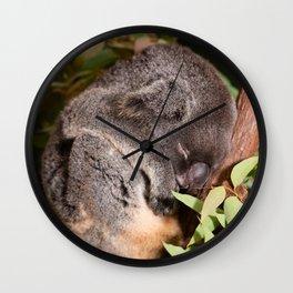 Koala sleeping Wall Clock