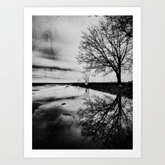 | after the rain | Art Print
